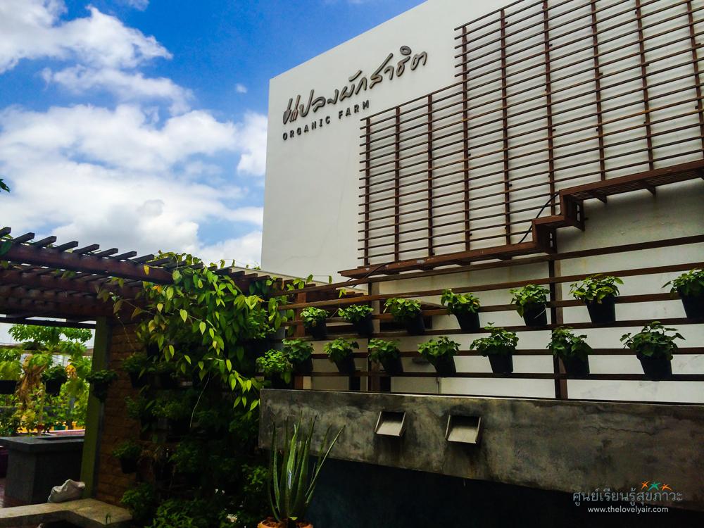 thaihealthcenter10