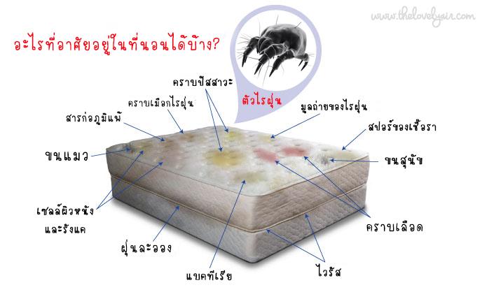 Protect-a-bed-lovelyair.com-blog8