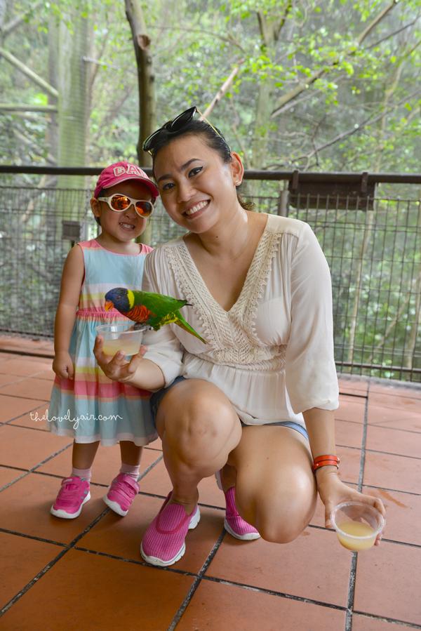 Jurong-Bird-Park-lovelyair-6