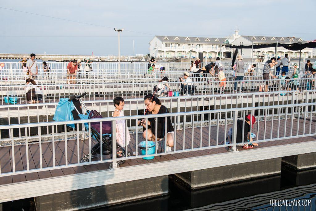 Review Japan 2016 LR-31