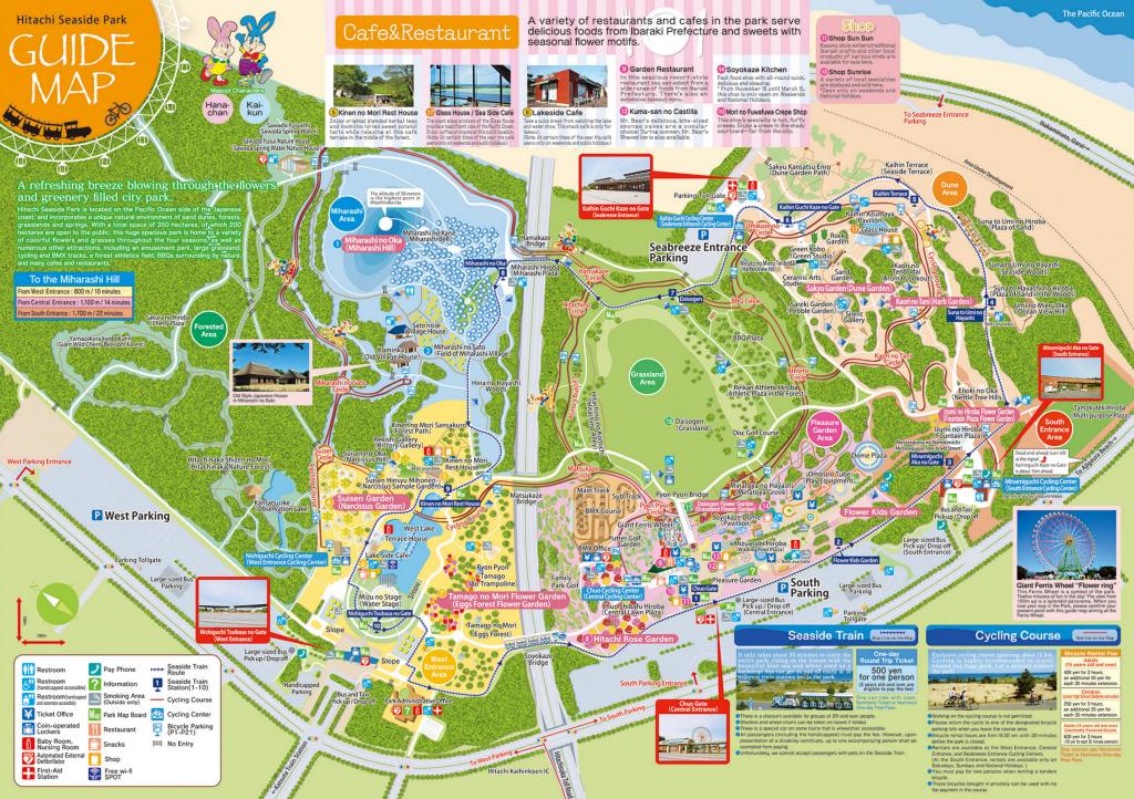 Hitachi Seaside Park-7