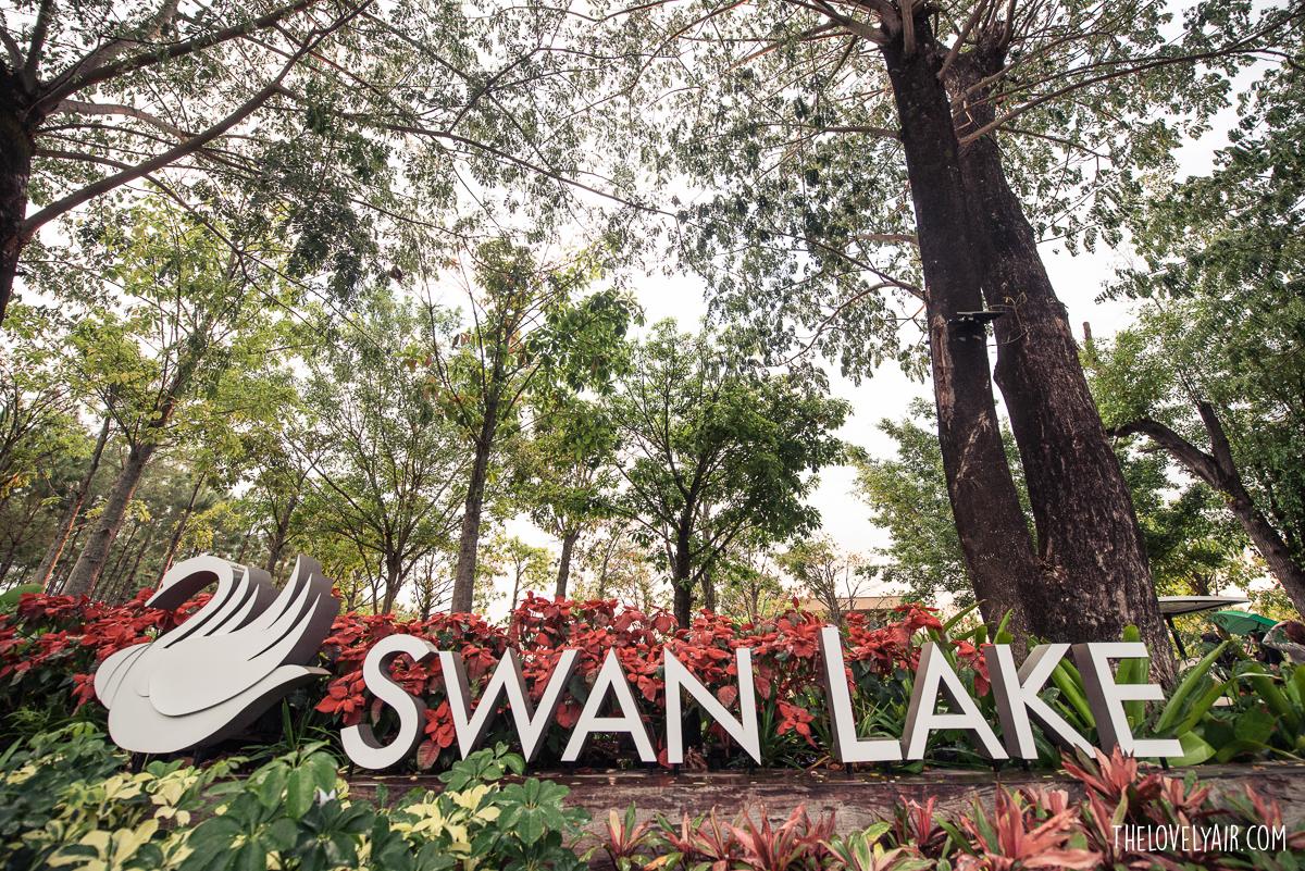SwanLake-thelovelyair-28