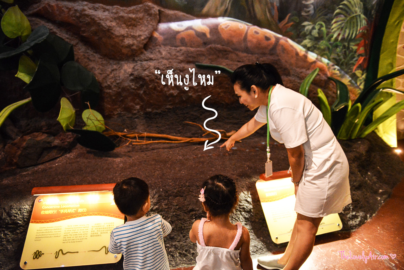 Siam-Serpentarium--3